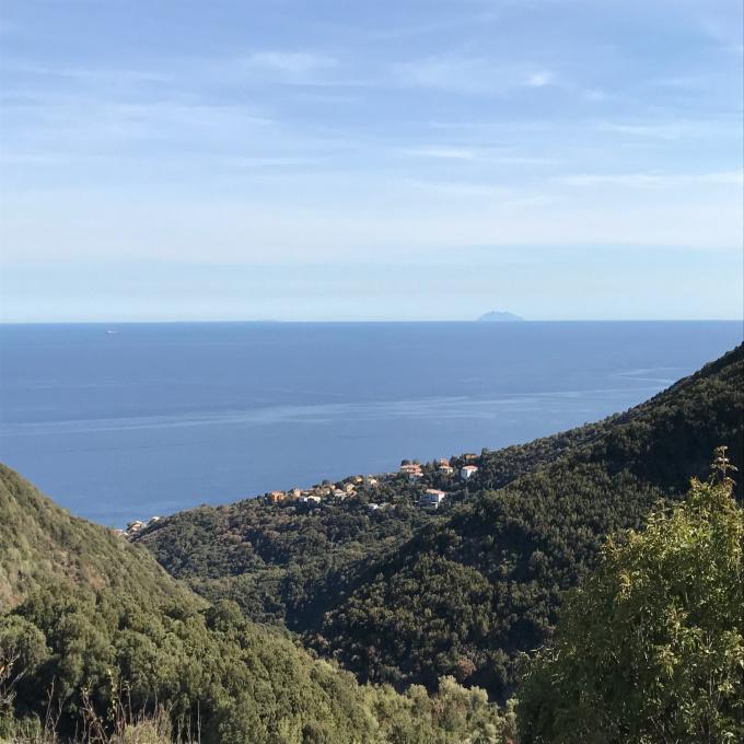 Offres de vente Maison de village San-Martino-di-Lota (20200)