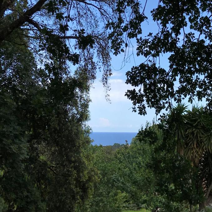 Offres de vente Terrain San-Nicolao (20230)