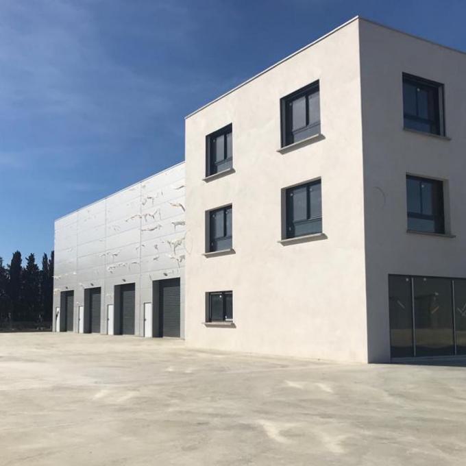 Location Immobilier Professionnel Entrepôt Lucciana (20290)